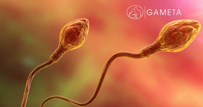 Niepłodność męska - przyczyny i leczenie